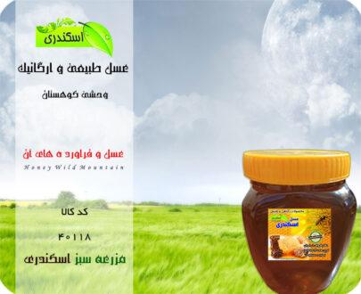 خرید عسل خالص و طبیعی کوهستان