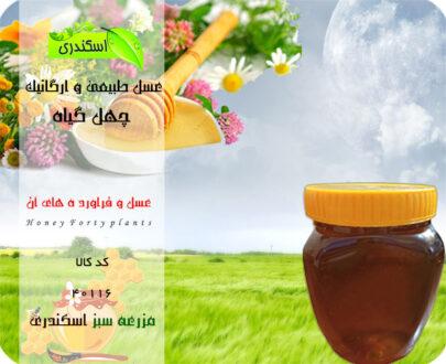 عسل چهل گیاه خالص و طبیعی