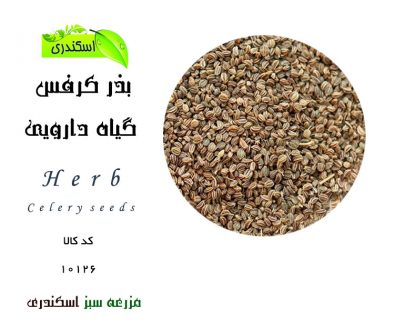 بذر کفس ، خرید اینترنتی بذر کرفس