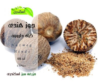 Nutmeg-Hindi ، خرید اینترنتی جوز هندی ، خواص جوز هندی