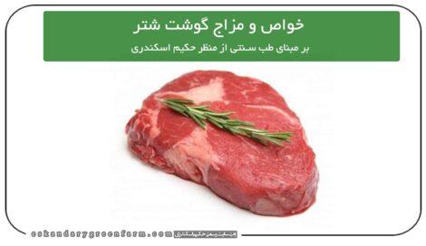 خواص و مزاج گوشت شتر در طب سنتی
