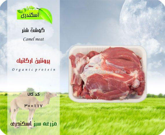 خرید اینترنتی گوشت شتر