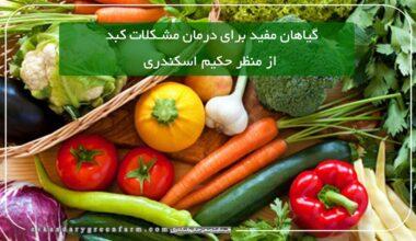گیاهان مفید در درمان مشکلات کبد در طب سنتی حکیم اسکندری